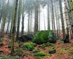 Szlakami największych atrakcji w Szklarskiej Porębie