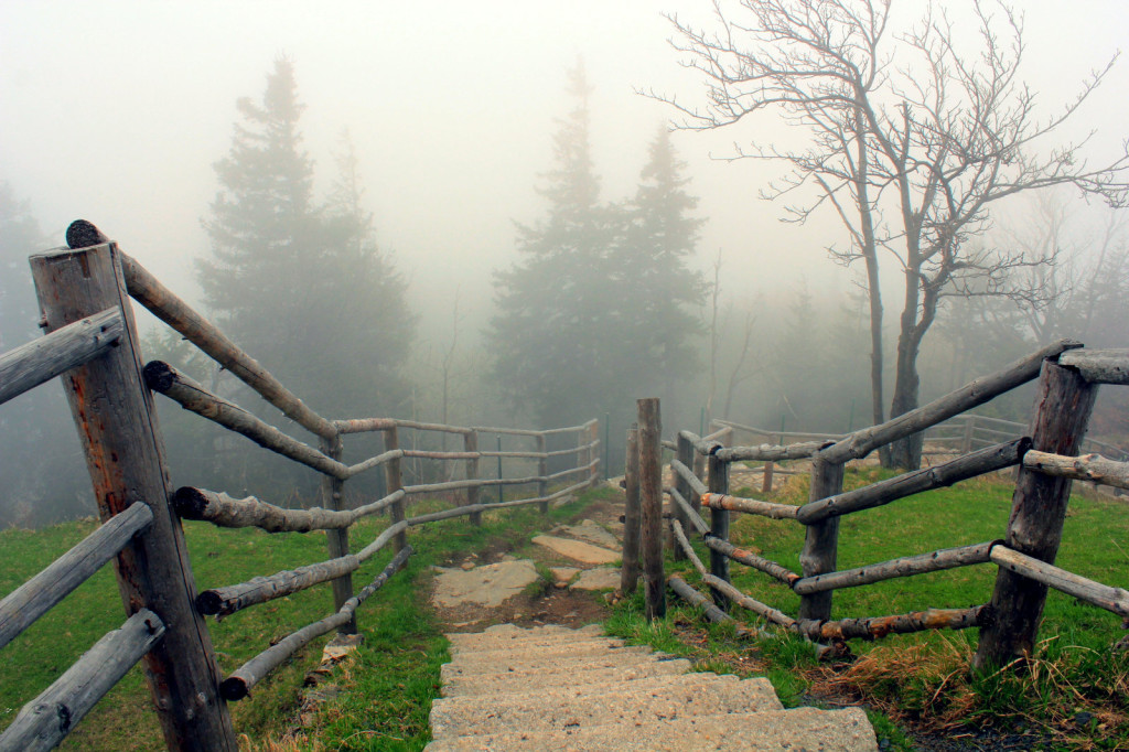 Szklarska Poręba; szlak prowadzący na Wysoki Kamień (1058 m n.p.m.)