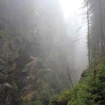 Szklarska Poręba: wąwóz Kamieńczyka