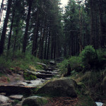 Szklarska Poręba: na trasie do Łabskiego Szczytu