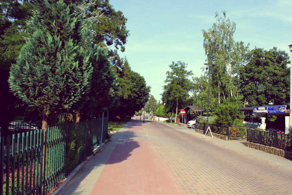 Bory Tucholskie: Charzykowy