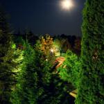 Bułgaria, Albena: hotelowy park