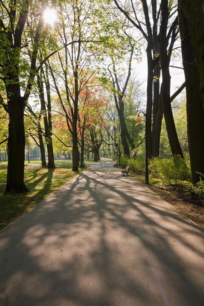Poznań: Park Sołacki; autor zdjęcia: Mateusz Hromada (http://www.flickr.com/photos/ruandus/4531081205/)