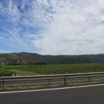 Autostrada Panamerykańska: Molina, Chile; źródło zdjęcia: http://www.flickr.com/photos/ponyboy101/4203481946/