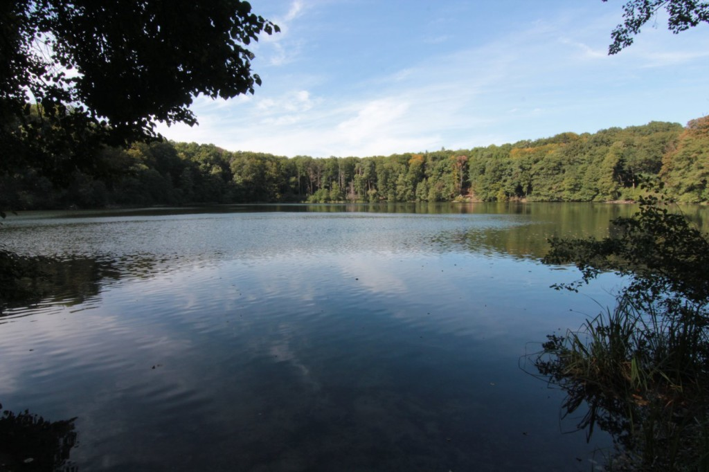Wielkopolski Park Narodowy - jezioro Kociołek