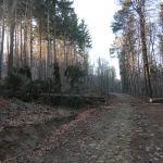 Ślężański Park Krajobrazowy, niebieski szlak