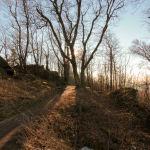 Ślężański Park Krajobrazowy, Ślęża