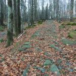 Ślężański Park Krajobrazowy