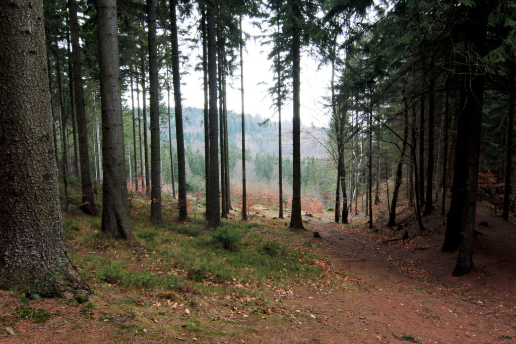 Rudawski Park Krajobrazowy, panorama widokowa