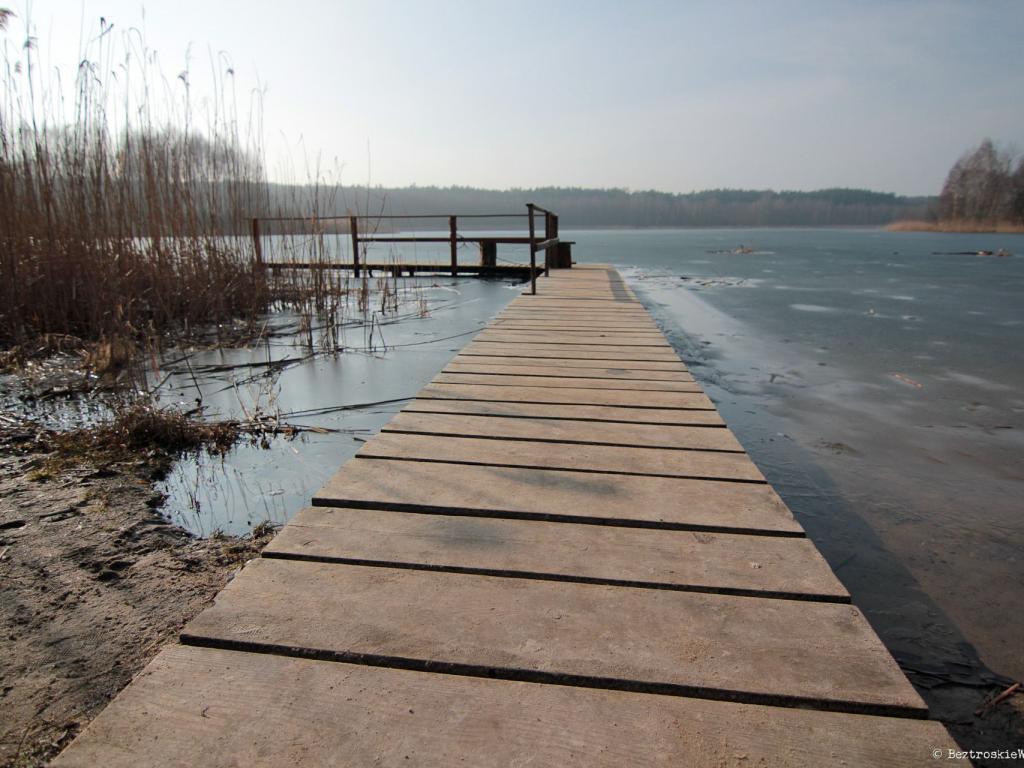 Rowerowa ekspedycja w głąb Puszczy Zielonka
