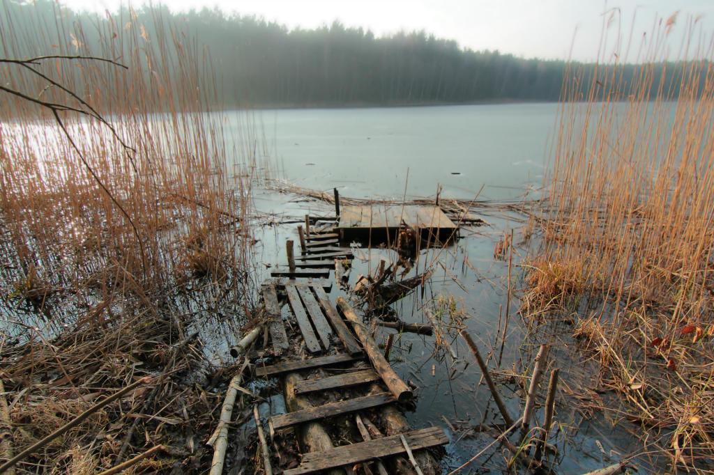 Puszcza Zielonka, jezioro Miejskie