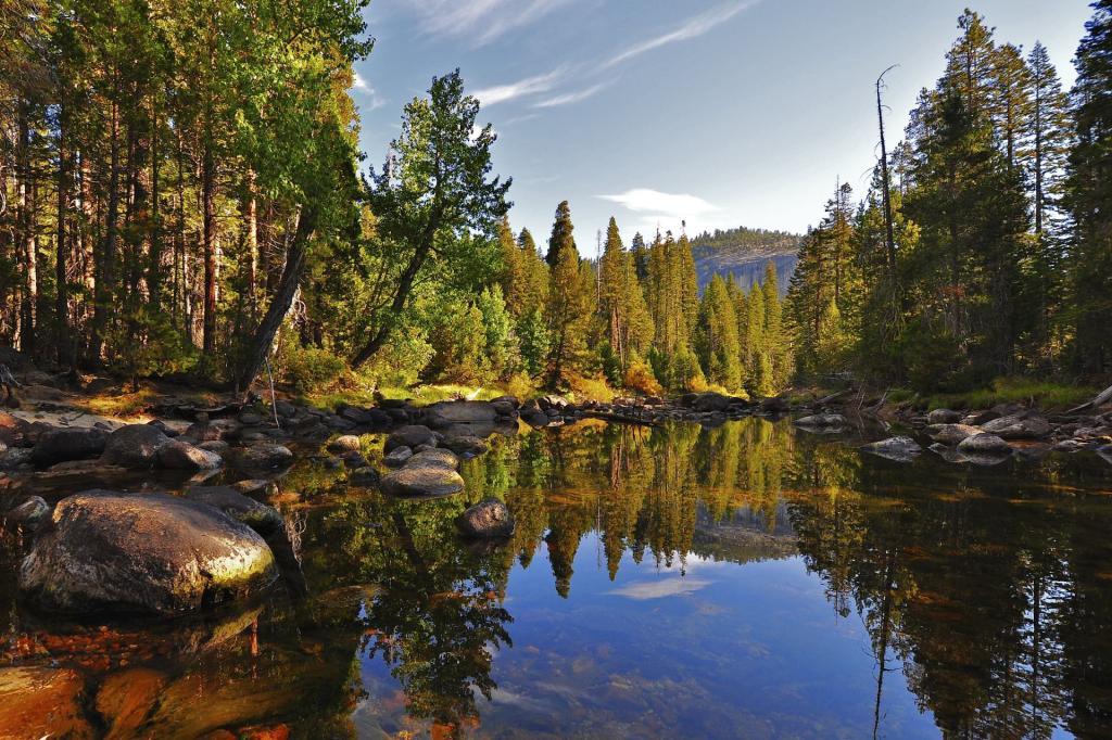 Park Narodowy Yosemite, rzeka Merced, Little Yosemite Valley. Autor zdjęcia: Steve Dunleavy