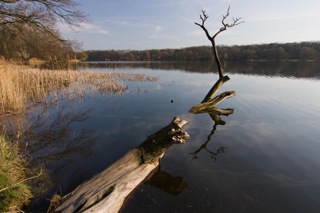 Poznań, jezioro Rusałka