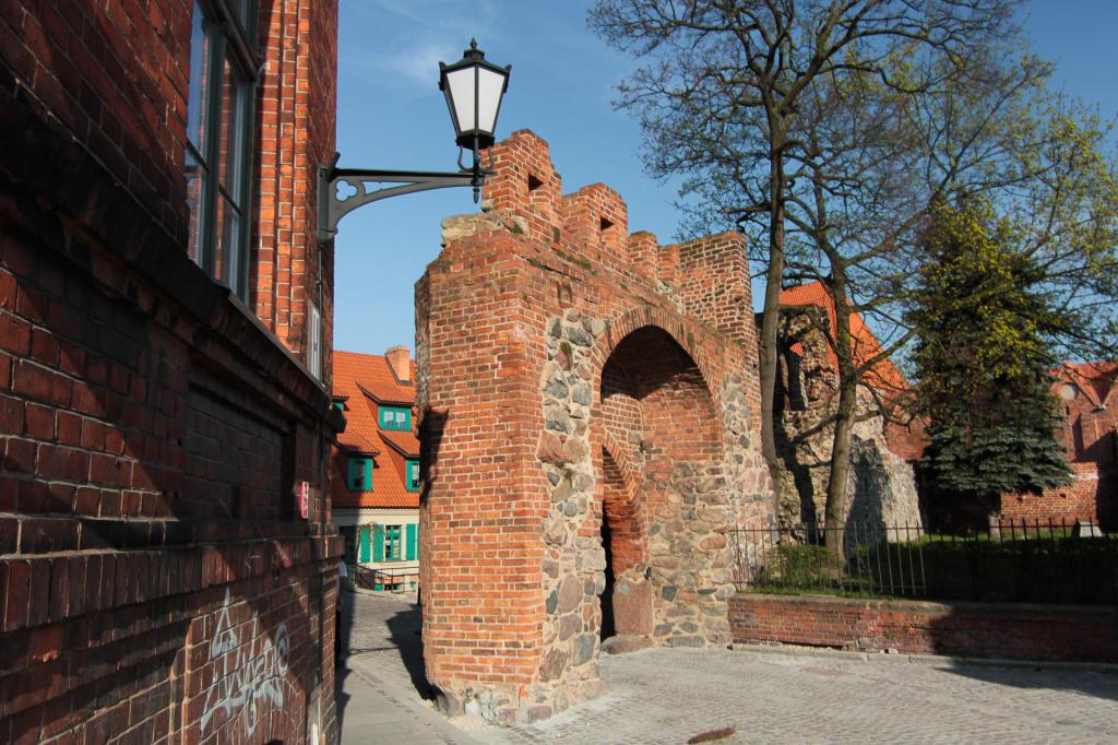 Toruń, Zamek Krzyżacki