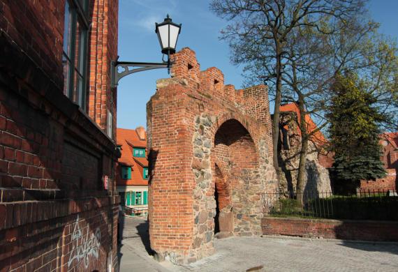 2014 / Polska: Toruń i okolice