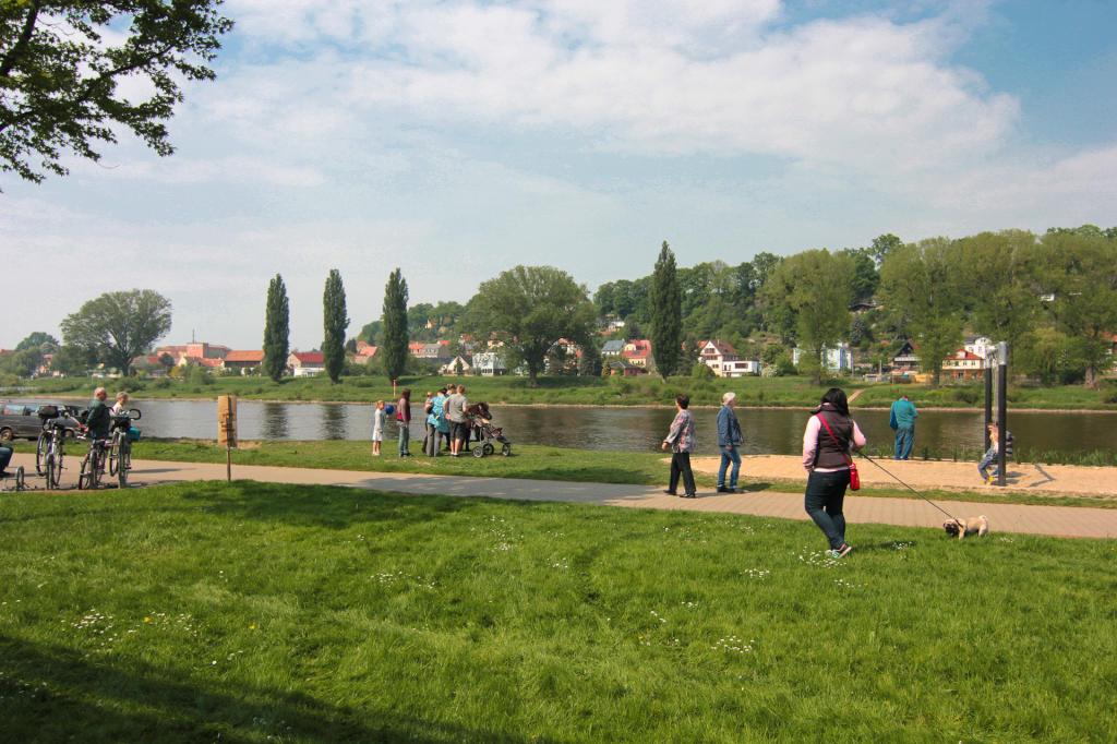 Saska Szwajcaria: park przy Łabie w Pirnie