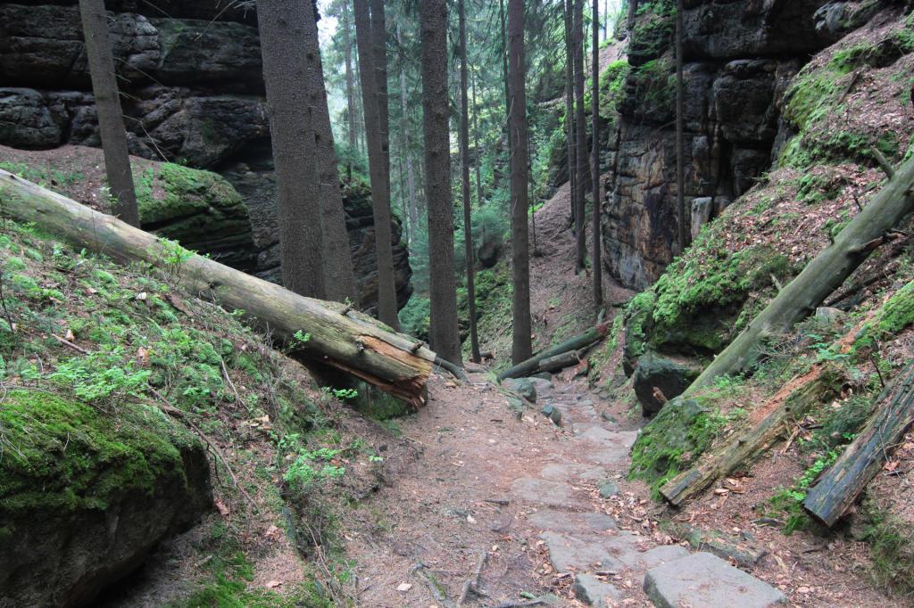 Czeska Szwajcaria: droga do Dolskiego mlýnu