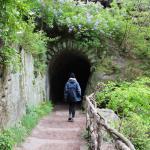 Czeska Szwajcaria: Brama Pravčicka i okolice