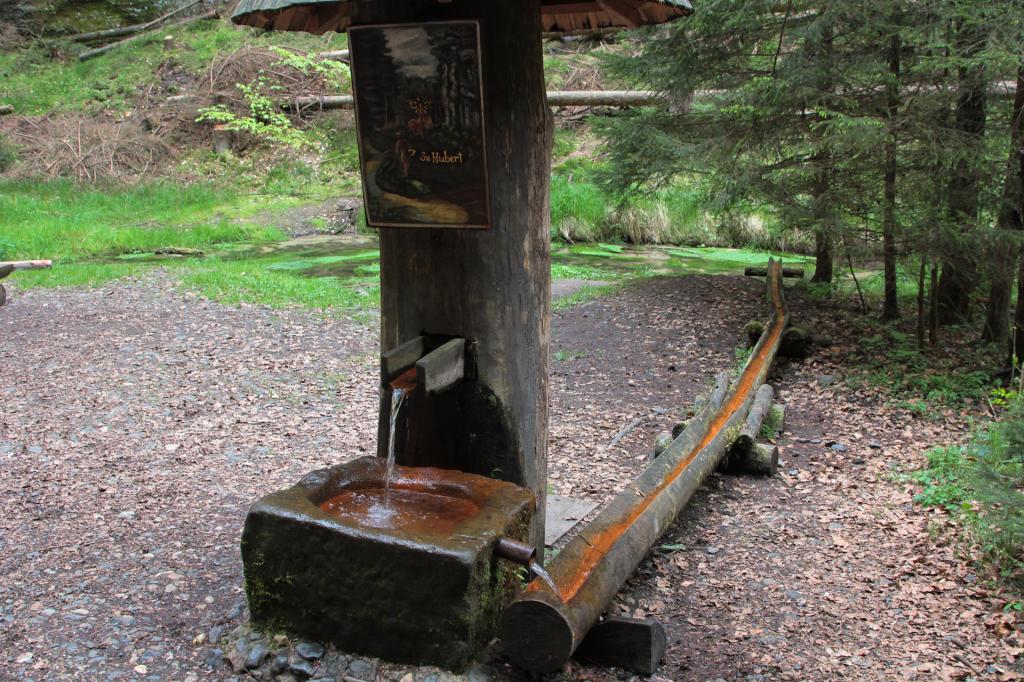 Czeska Szwajcaria: wodopój na rzece Kamienica