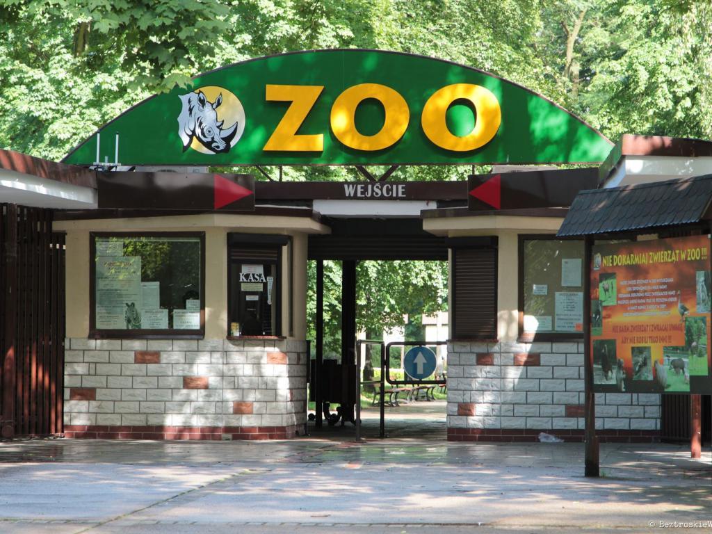 Ucieczka od miasta do Nowego Zoo w Poznaniu