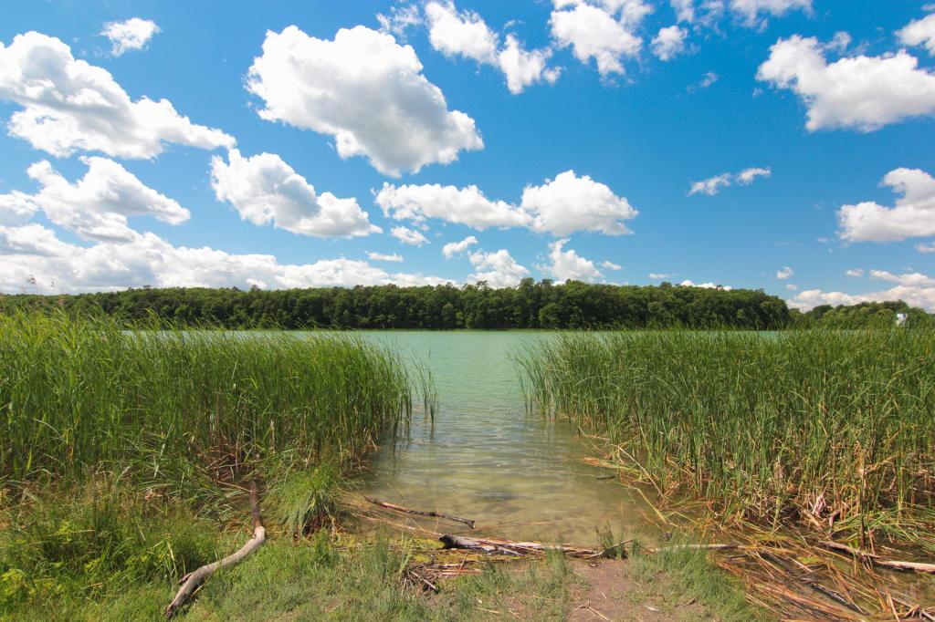 Wielkopolski Park Narodowy, jezioro Góreckie