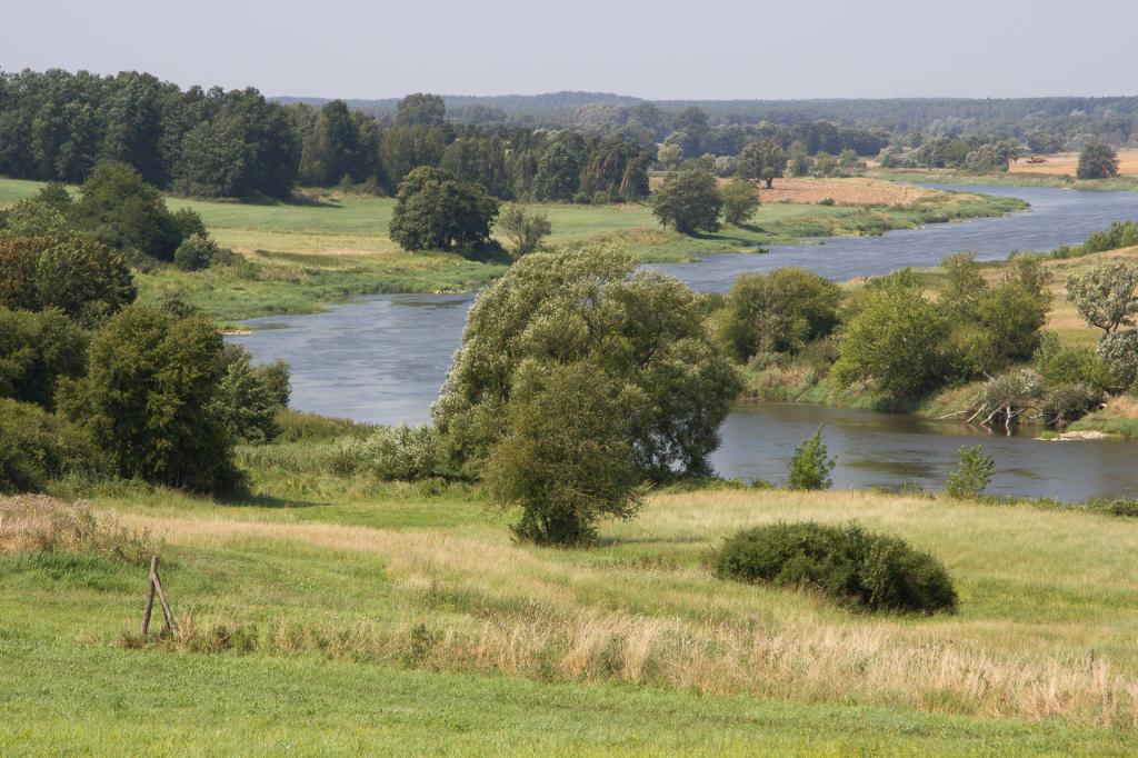 Widok na Wartę w okolicach Wronek