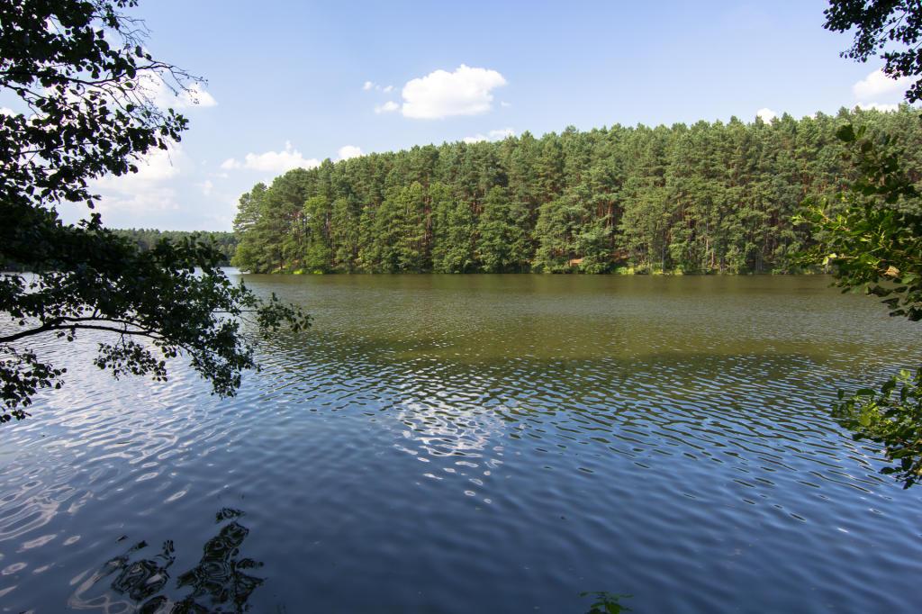 Jezioro Kubek obok Sierakowa