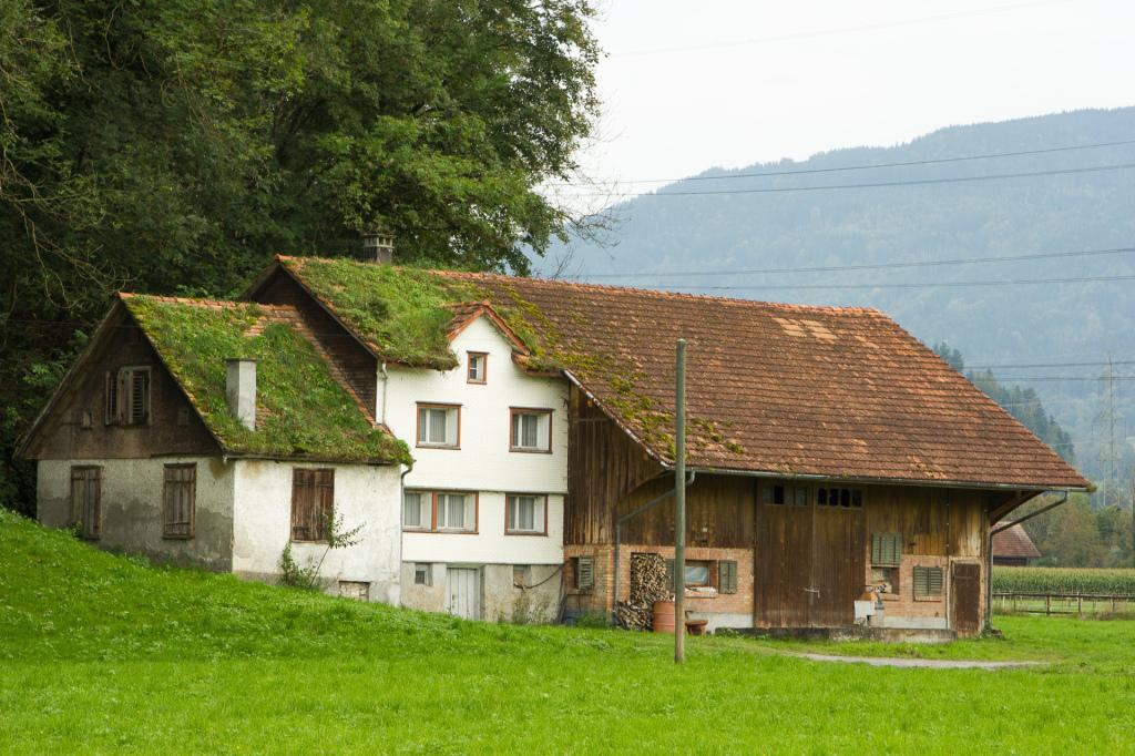 Szwajcaria: zarośnięty domek przy Renie