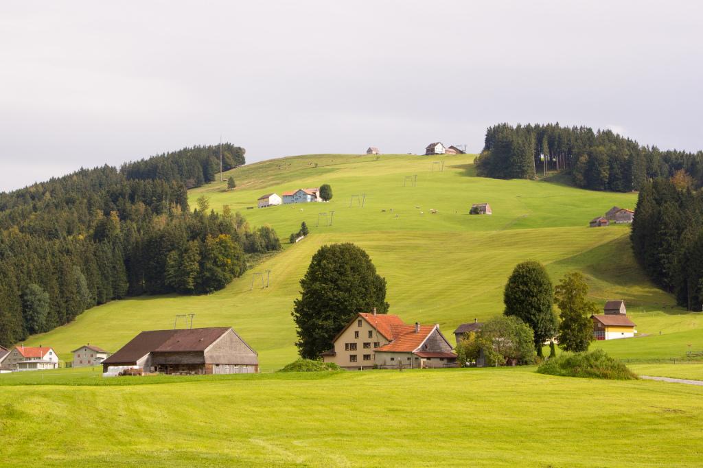 Szwajcaria: zielono jak w Appenzell!