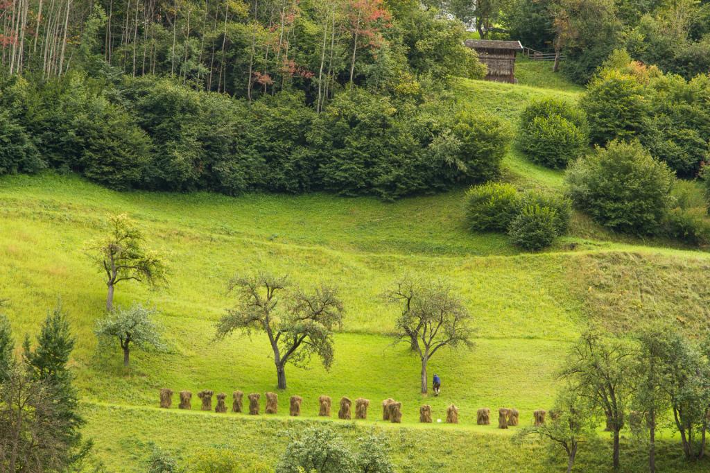 Austria: stary człowiek i... słomiane stworki