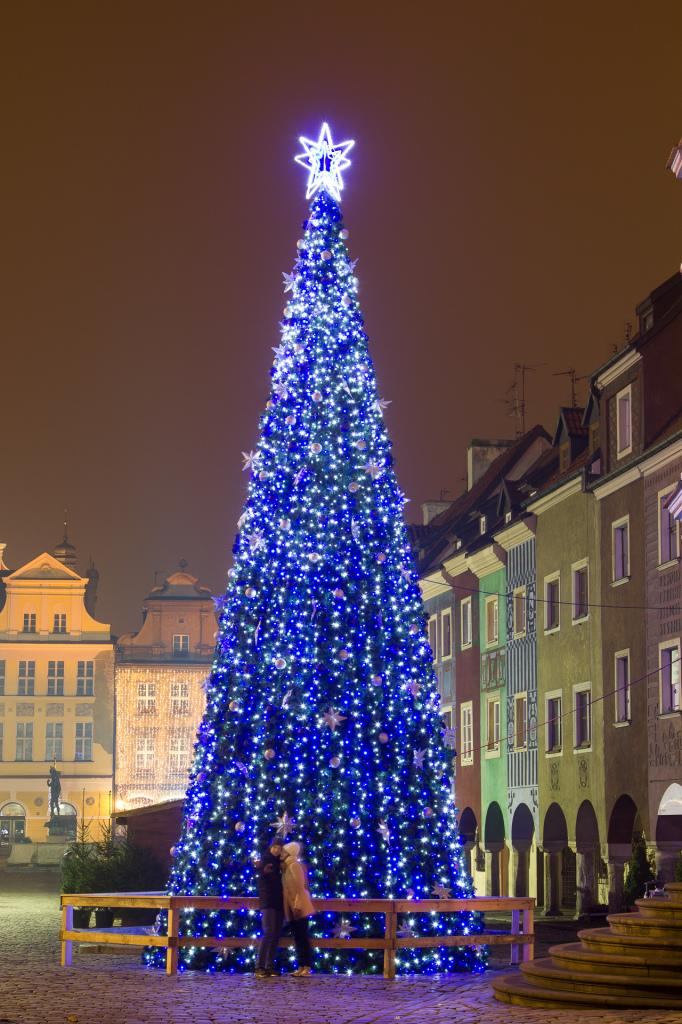 Choinka w Poznaniu, Stare Miasto