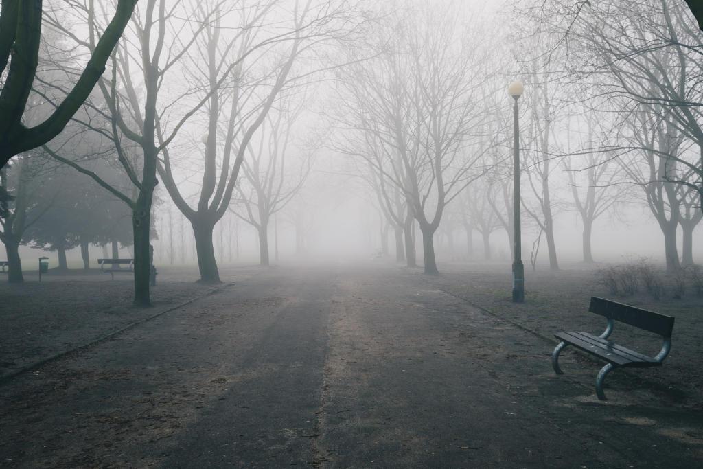 Poznań - mglisty poranek w Parku Kasprowicza