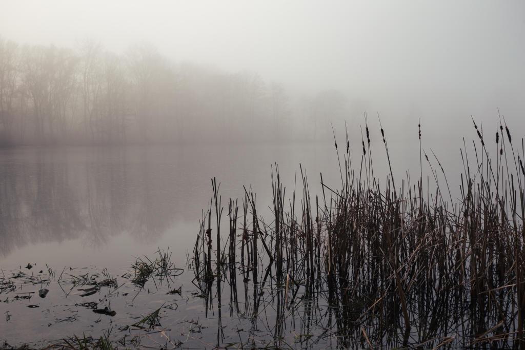 Poznań: jezioro Rusałka