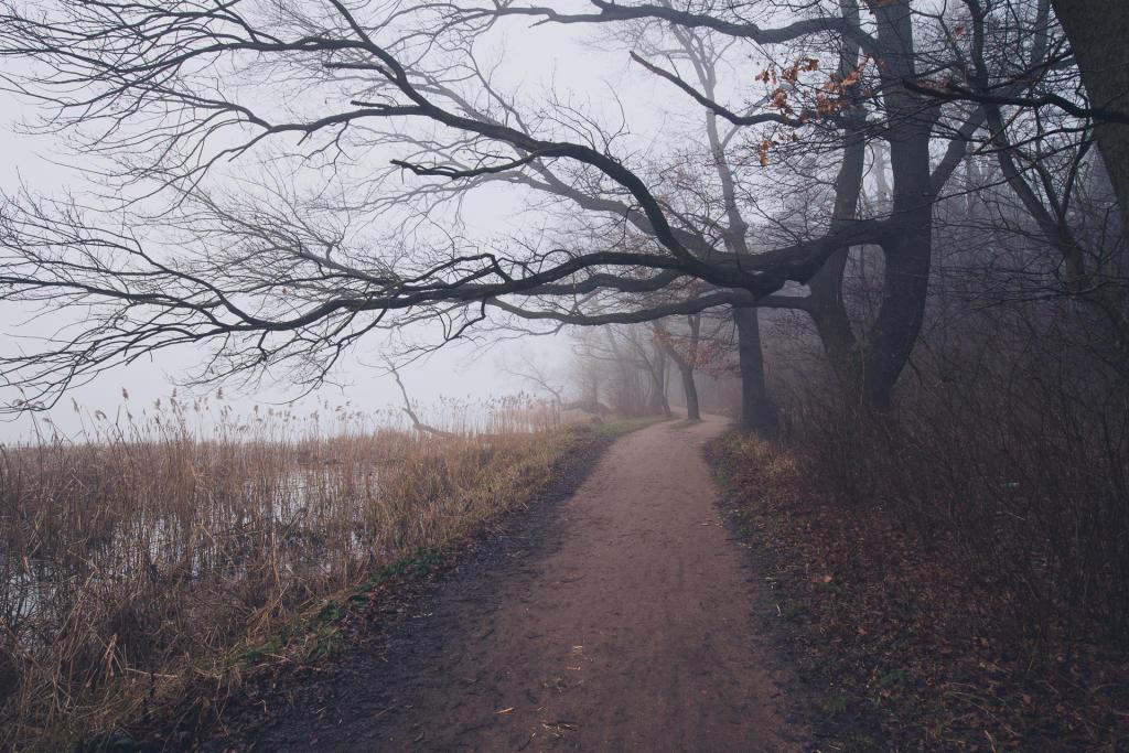 Poznań: szlak dookoła Rusałki