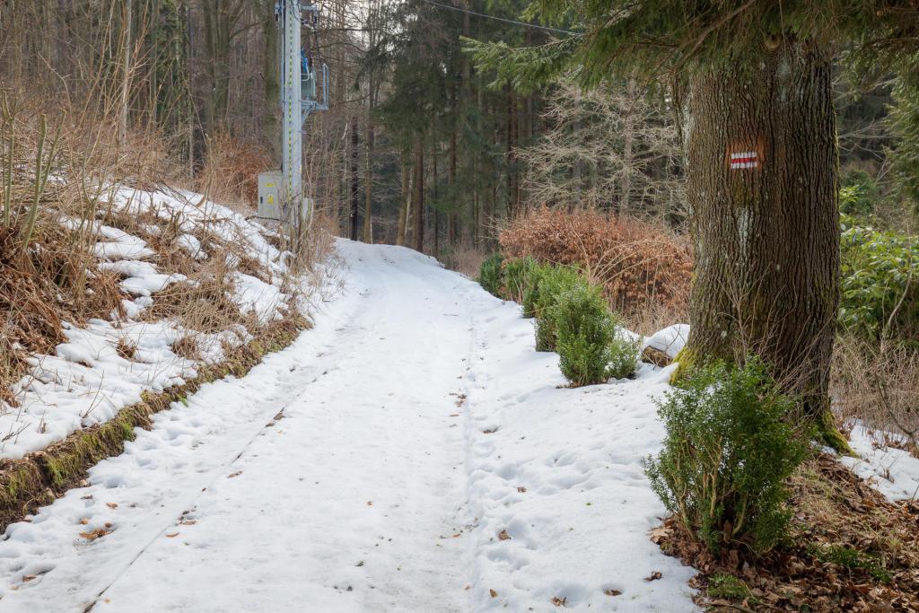 Droga do Ogrodu Bajek w Międzygórzu