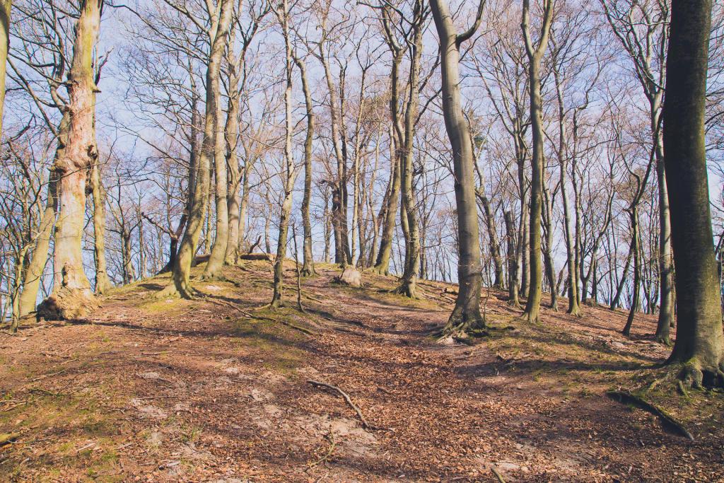 Woliński Park Narodowy: góry nad morzem