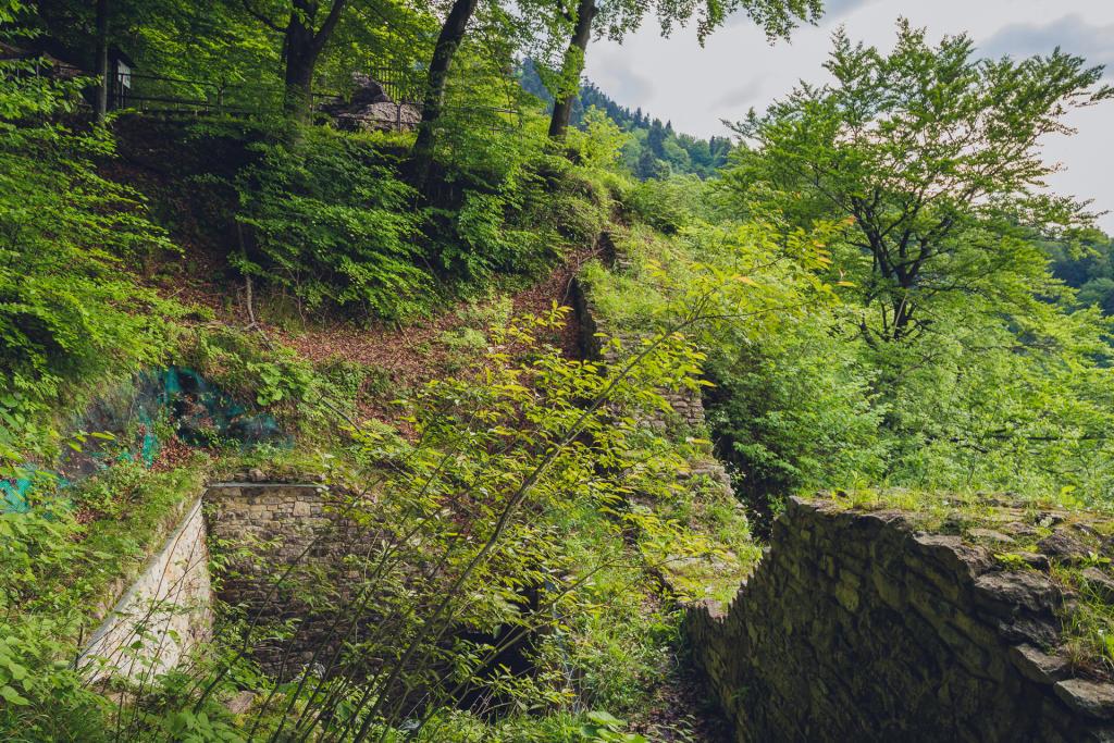 Pieniński Park Narodowy: Zamek Pieniny