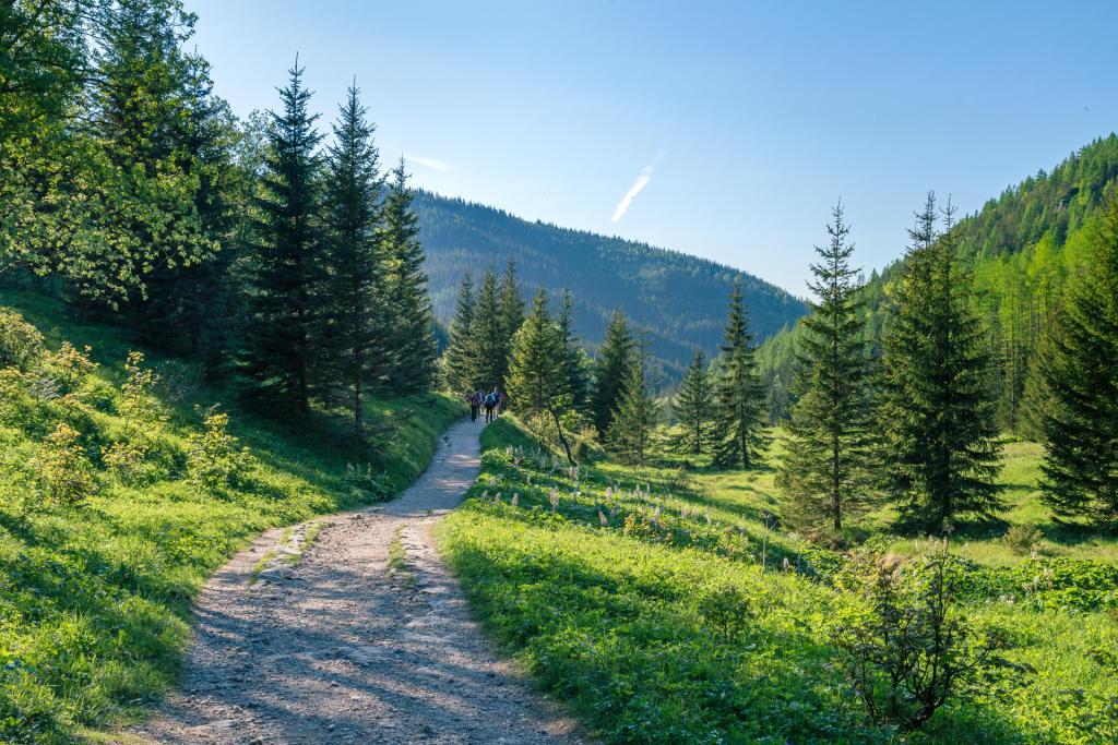 Dolina Jaworzynki, Tatry