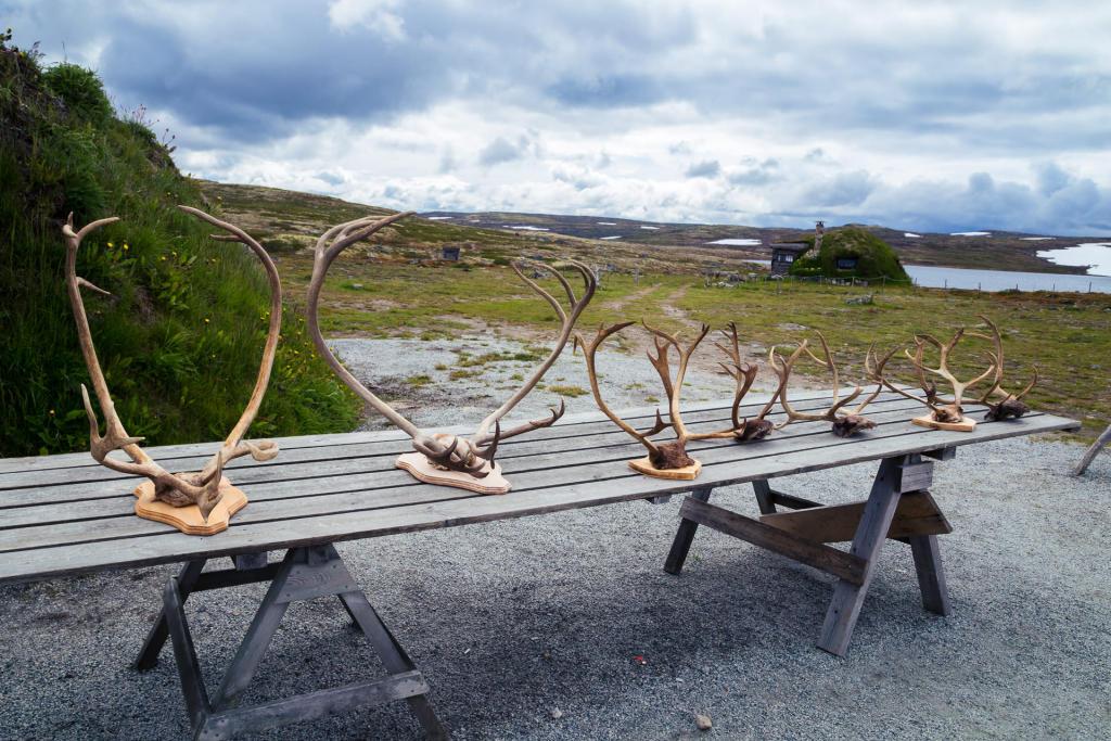 Płaskowyż Hardangervidda - sklep z pamiątkami