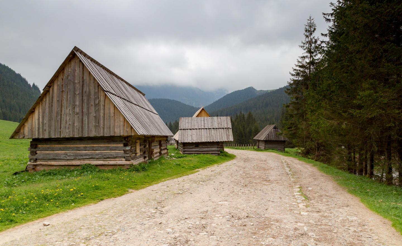 Dolina Chochołowska, czyli pomysł na leniwe popołudnie