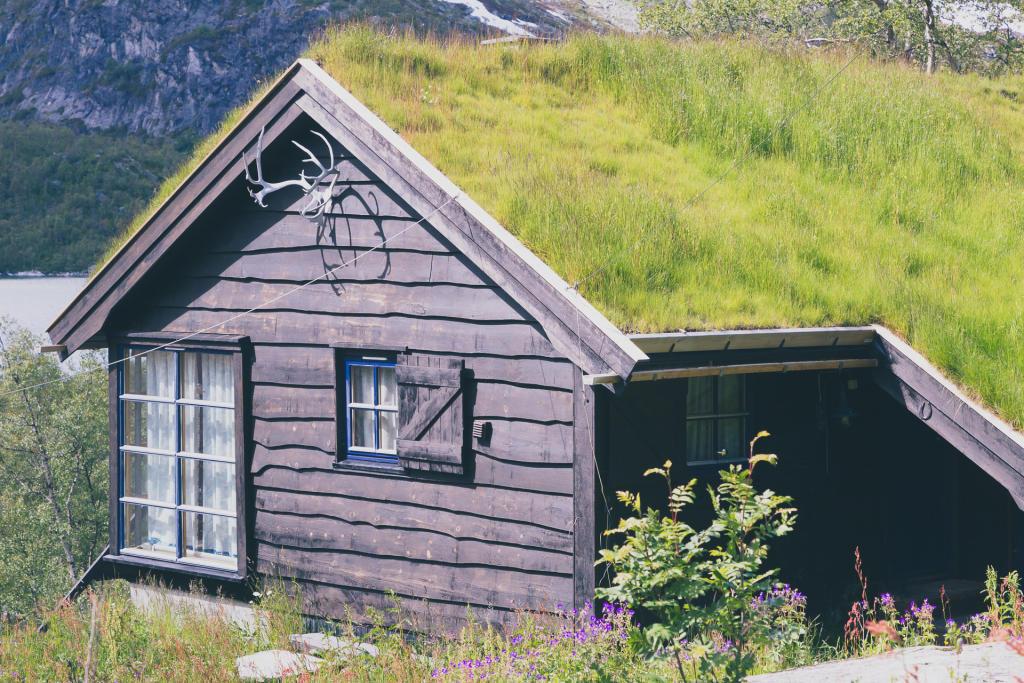 Rallarvegen - domek z porożem
