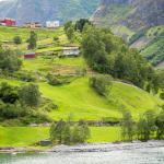 Samotne domki nad Nærøyfjordem