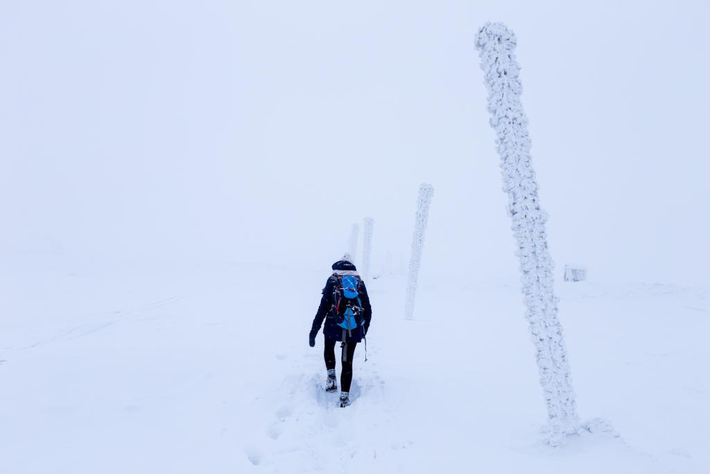 Szlak z Łabskiego Szczytu do Szrenicy