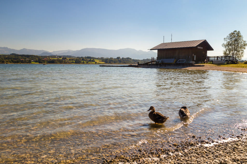 Jezioro Simssee