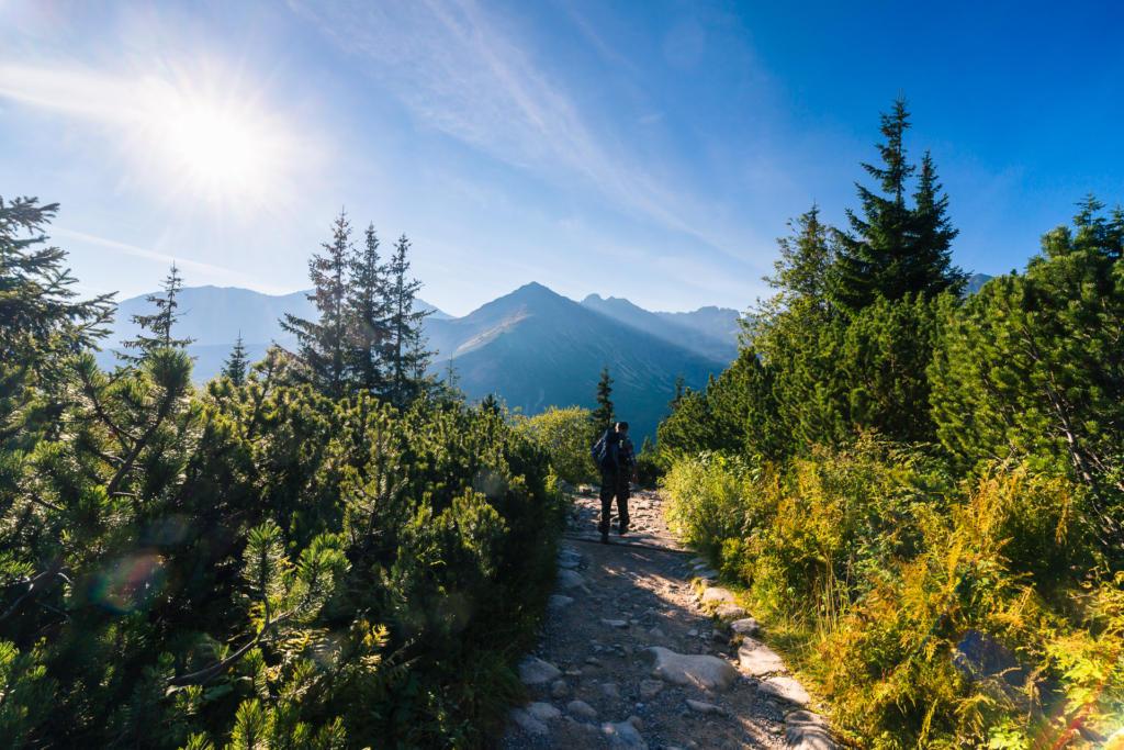 Niebieski szlak do Doliny Gąsienicowej, Tatry
