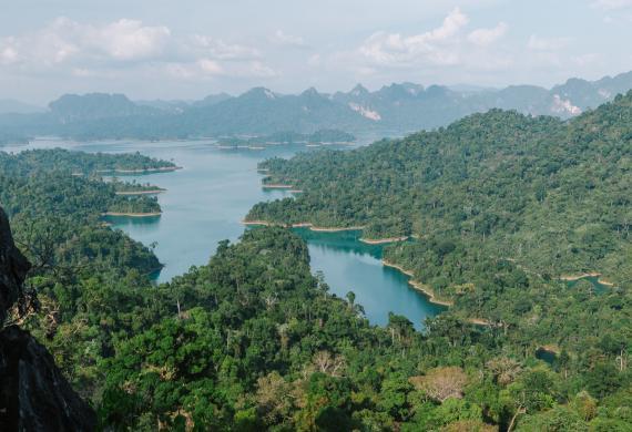 Khao Sok. W sercu tajskiej dżungli